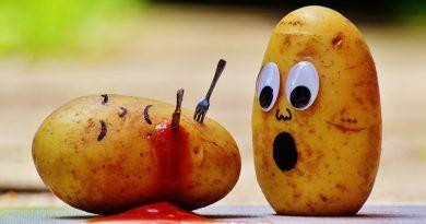 FAO: napätia trhu, reakcie na obezitu, rast dopytu